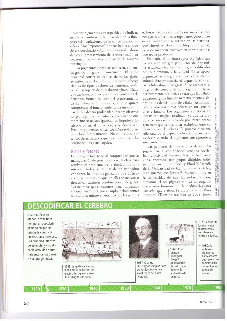 OBSERVACION-Y-CONTROL-DEL-CEREBRO-003